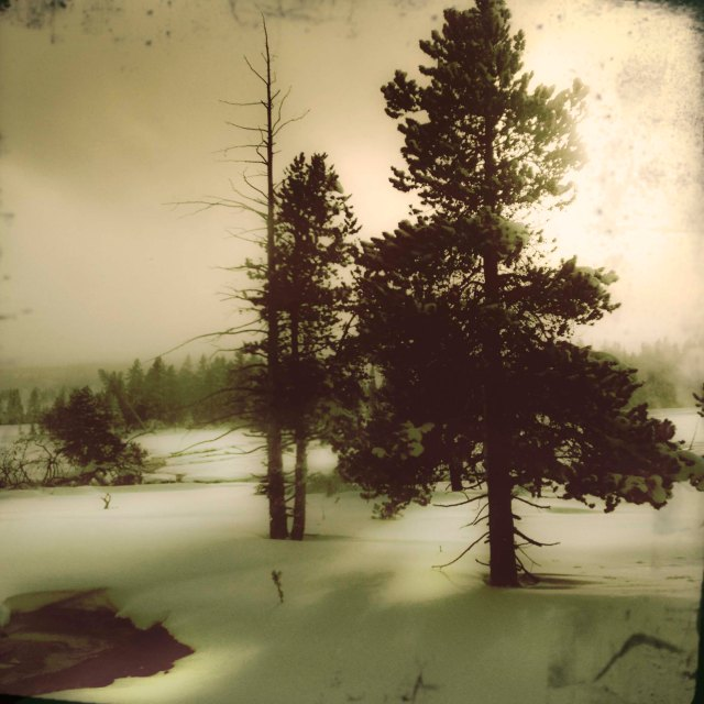 WInter_light_yellowstone_1