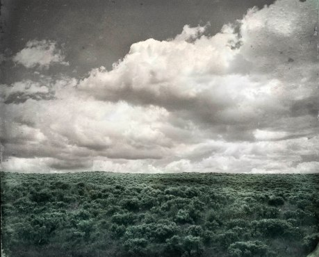 Sage and Sky
