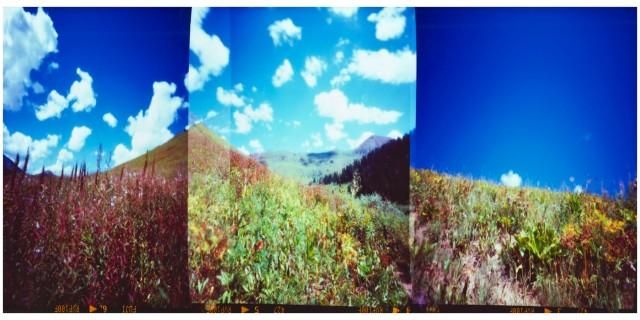 Fall Pinhole Triptych