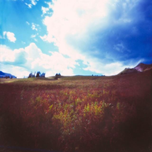 Autumn Pinhole
