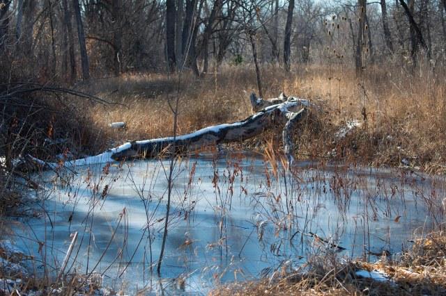 December_pond