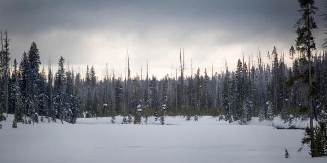 Sound_of_winter_1