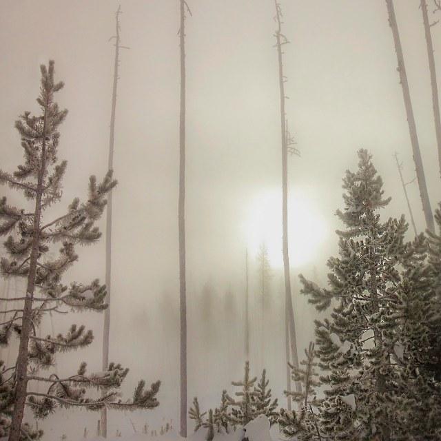 SUnrise_in_fog_1