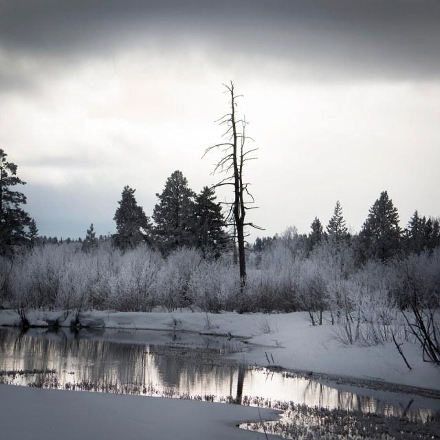 Winter_souds_2