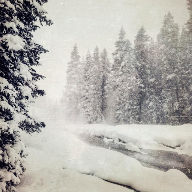Snowy_saturday_1