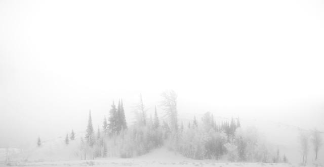 A_cold_fog