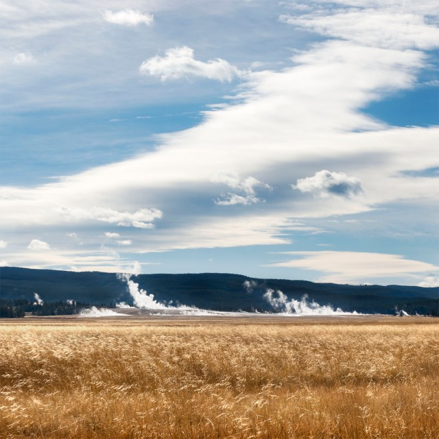golden-grass-and-gysers