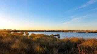 seaside_marsh_sunset