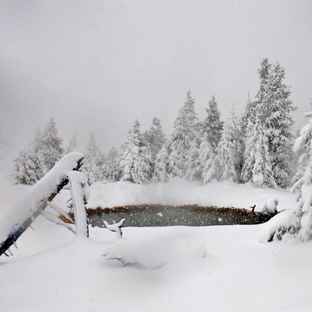 snowy_day_1