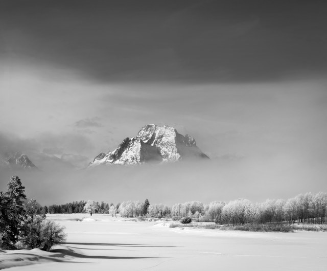 moran_winter_1_bw
