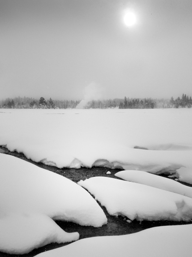 winter_day_bw_377