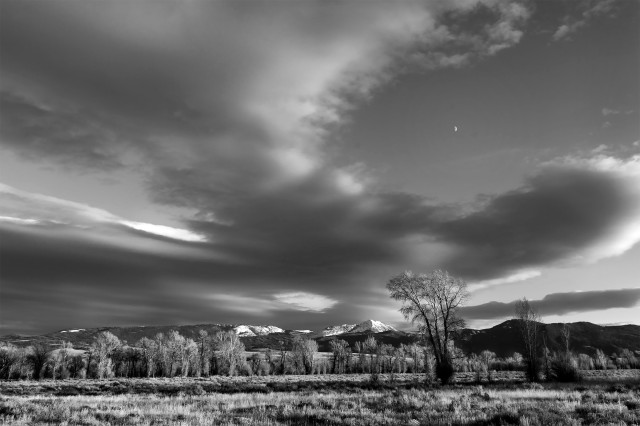 Half_moon_rising_bw