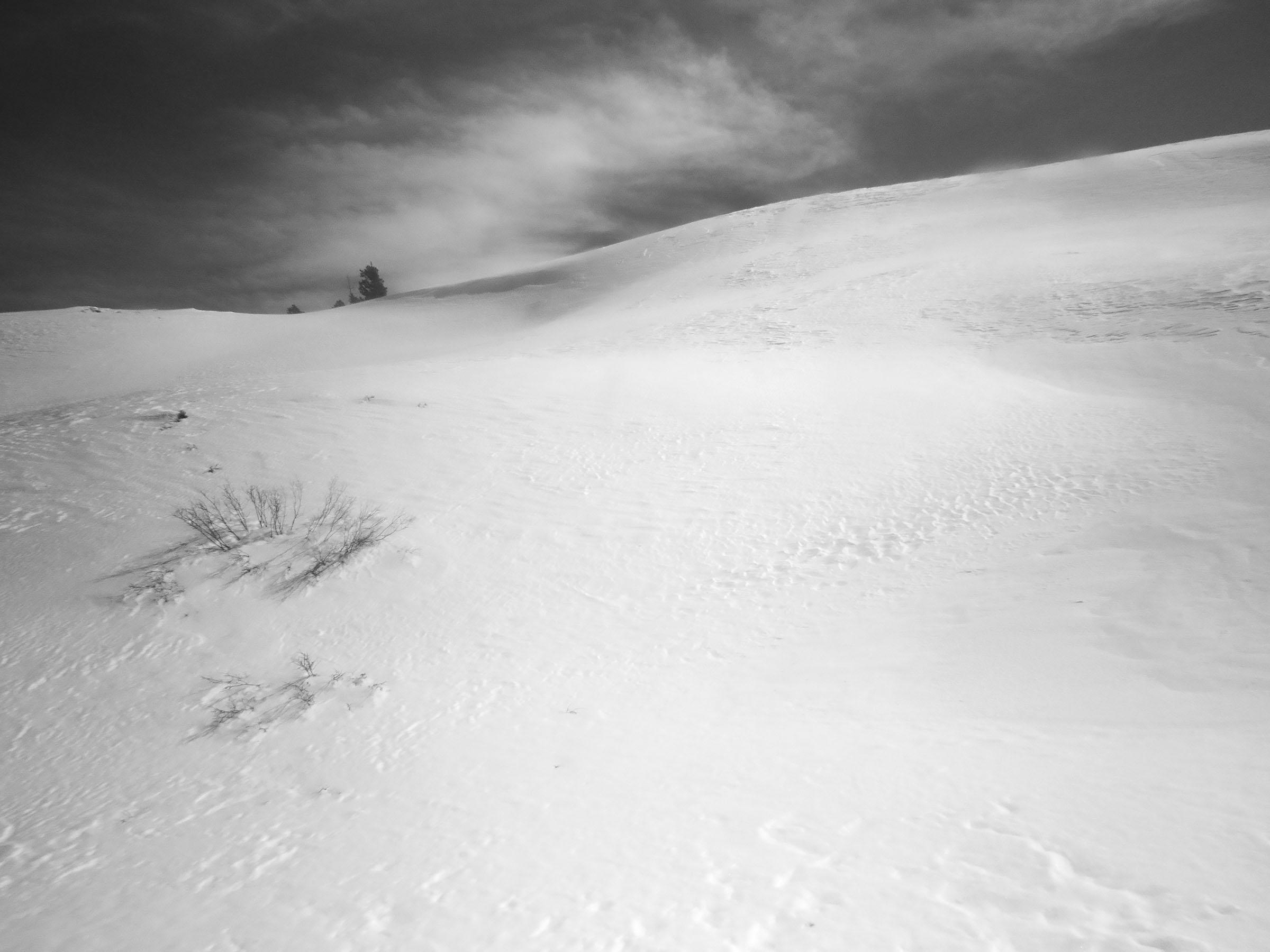 BW_snowscape_9012a