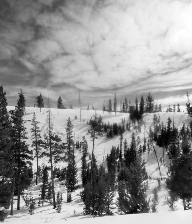 BW_snowscape_c