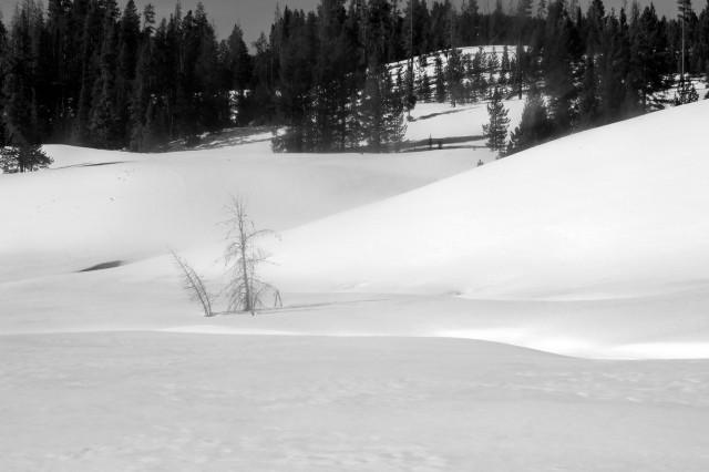BW_snowscape_e